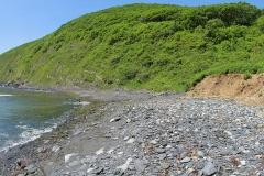 small-beach2